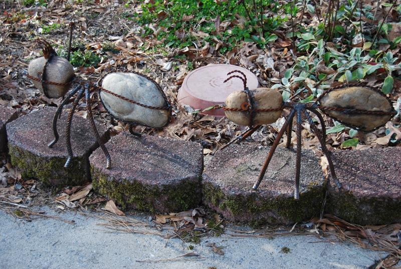 Yard Ants