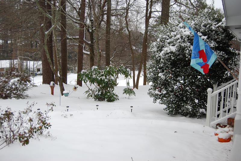 Snow 2011 2