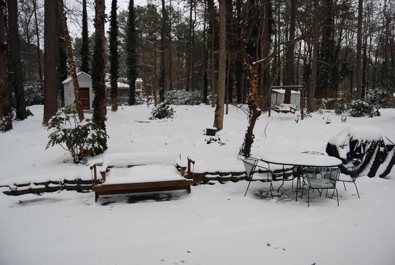 Snow 2011 3